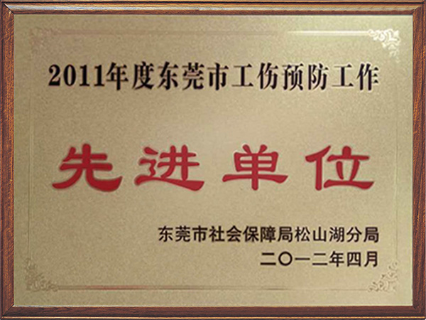 The Award for Dongguan city welfare